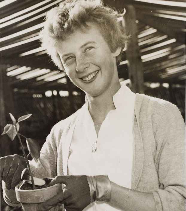 Top 10 Most Famous Australian Athletes of All Time, greatest athlete, australia, Betty Cuthbert